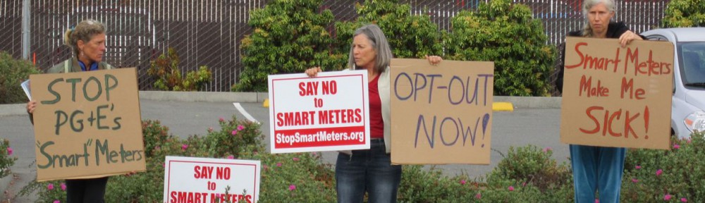 Day of Action to Stop Smart Meters!